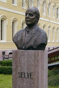Ján Selye
